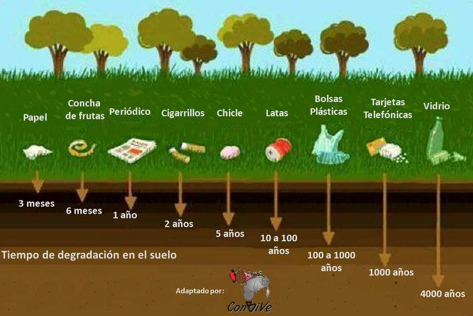 Tiempo de degradaci n de algunos desechos tesne blog 2 0 for Materiales que componen el suelo
